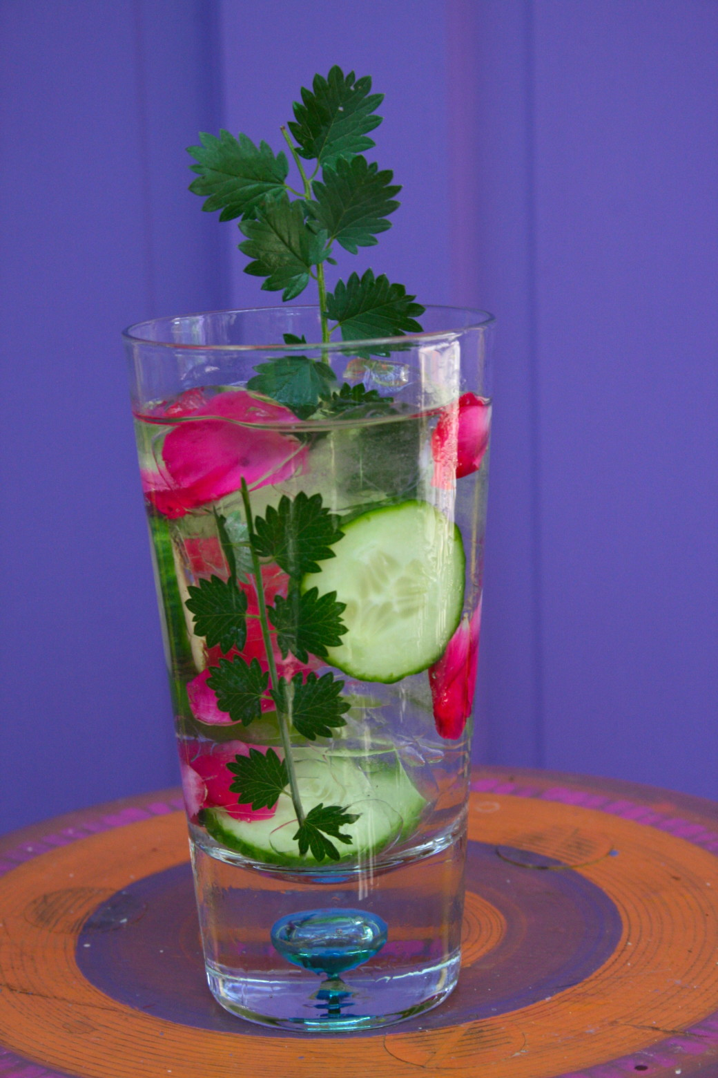 gin and tonic cucumber salad burnet spritzer
